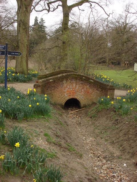 Small Footbridge in Nowton Park (1)