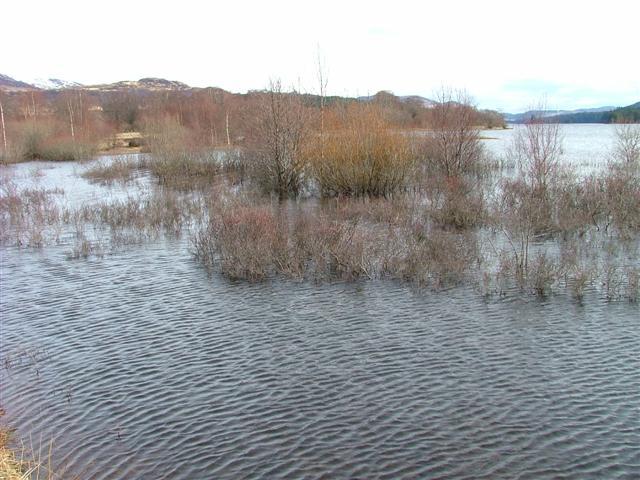 High Water on Loch Laggan