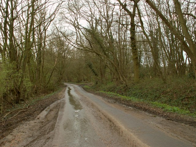 A very muddy Dagwood Lane