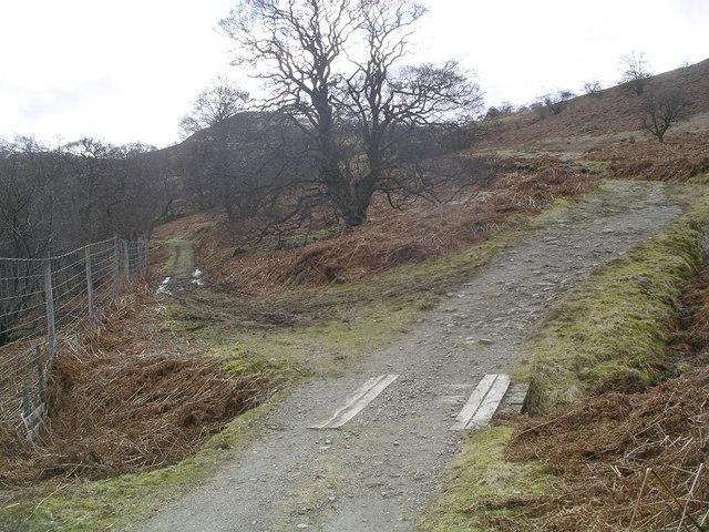 Track splits in Glen Vorlich