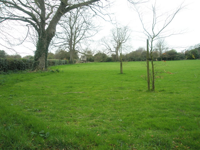 Verdant field adjacent to Hospital Lane, Portchester