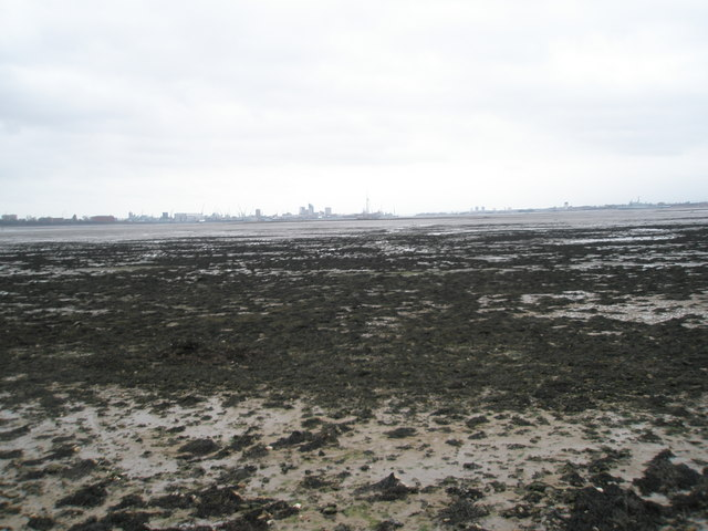 Looking across the mudflats at Portchester towards Portsmouth
