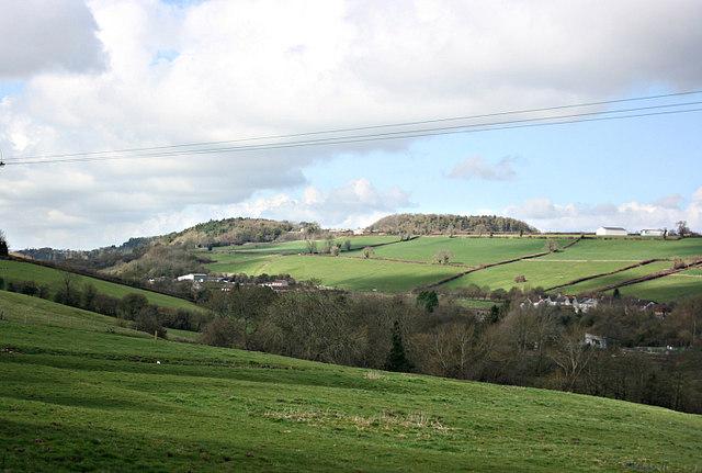 2008 : Shoscombe Vale