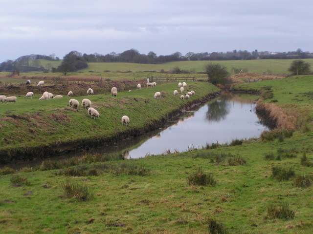 Royal Military Canal near Wincelsea