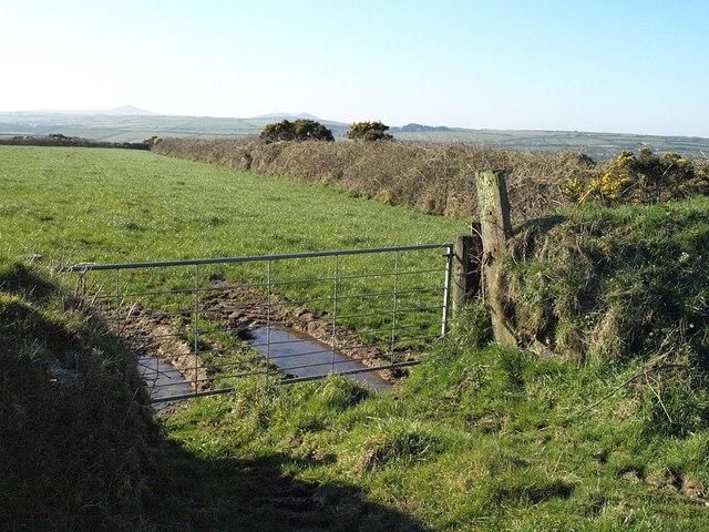 Field beside the A395