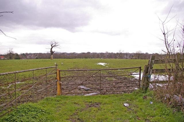 Farmland, Enfield Road, Enfield, looking south