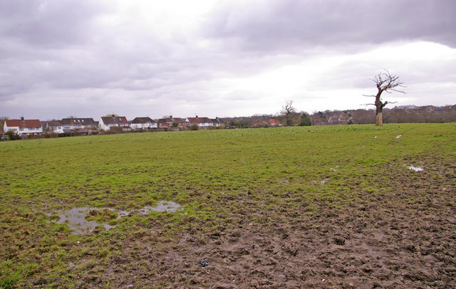 Farmland, Enfield Road, Enfield, looking east