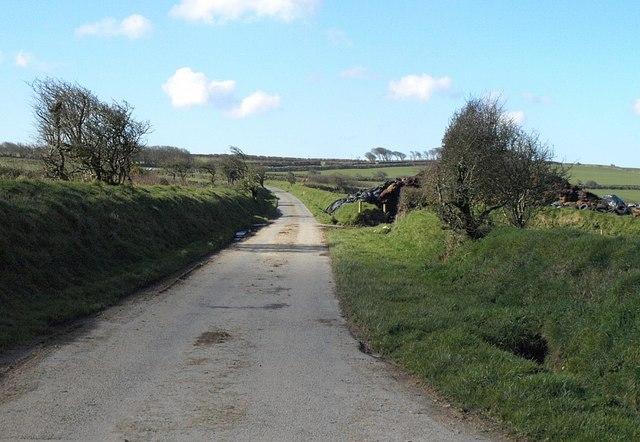 Lane near West Holme Farm