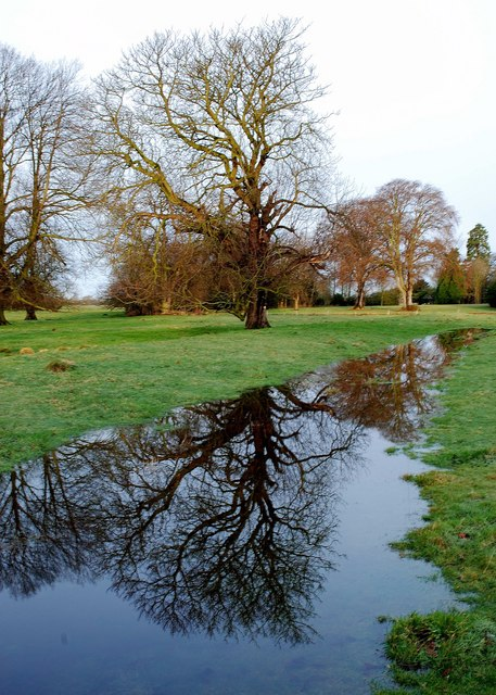 Reflection in flood water