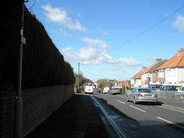 Lily Avenue Widley