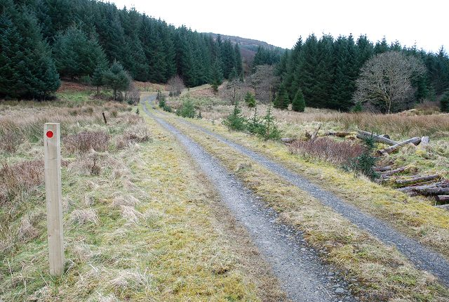 Waymarker post