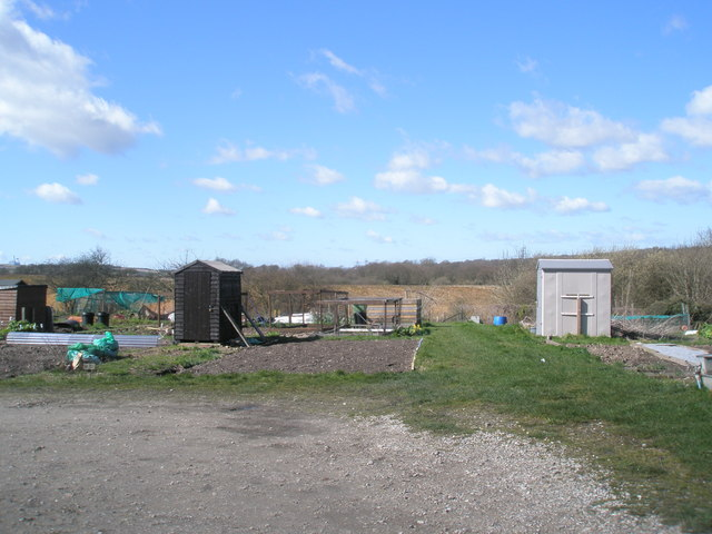 Purbrook West Allotments