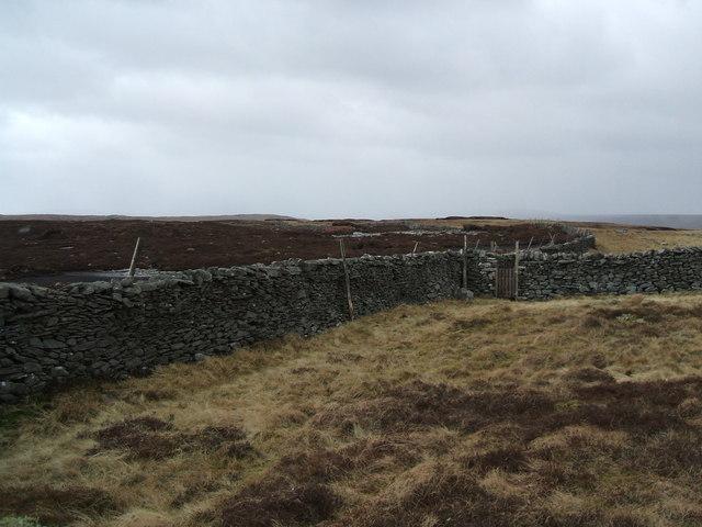 Walls on Birks Fell