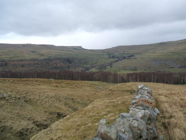 Kirk Gill Moor and Wood