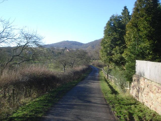 Lane at Chandler's Cross