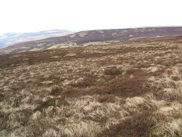 Out Moor