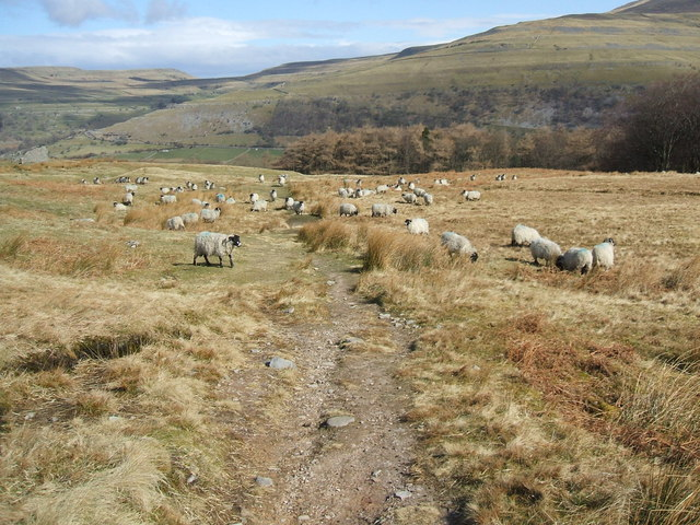 On the path from Buckden to Litton