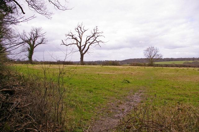 Farmland, Enfield Road north side, Enfield, looking west