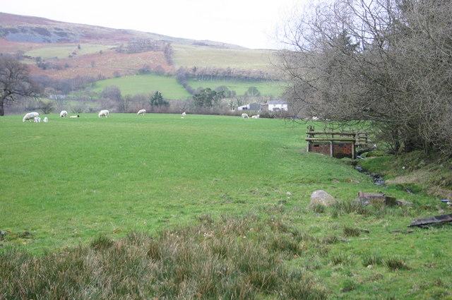 Fields below Cileos