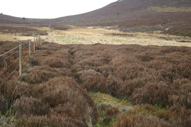Footpath by moorland fence