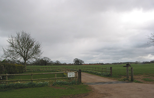Cattle grid at Court Farm
