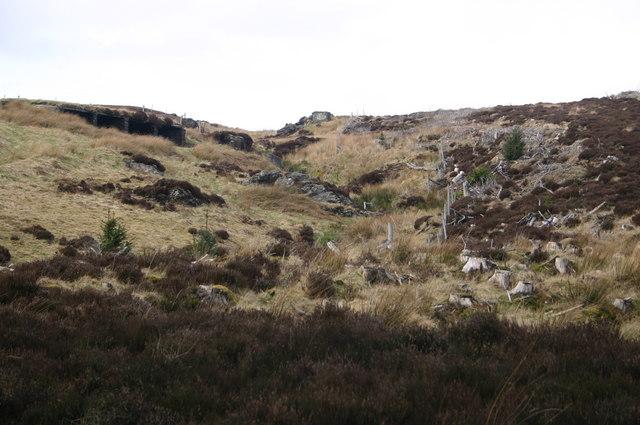 Sheepfold on hillside
