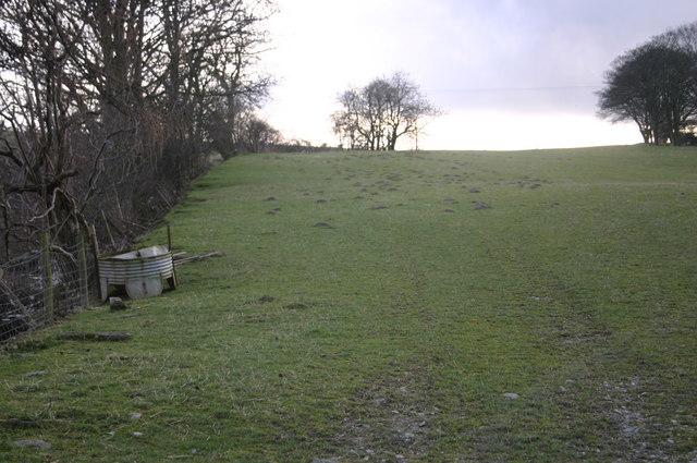 Field South of Rhiwlas