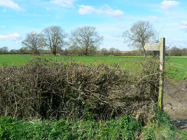 Footpath, south-west of Castle Cary