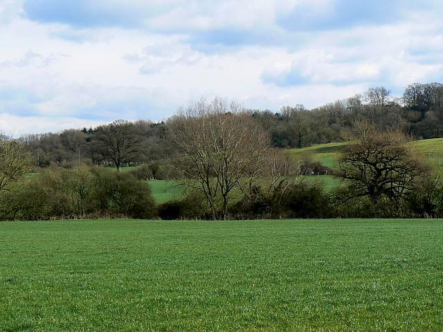 Farmland near East Pennard