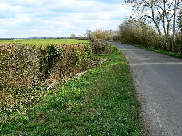 Watchwell Drove, near Butleigh Wootton