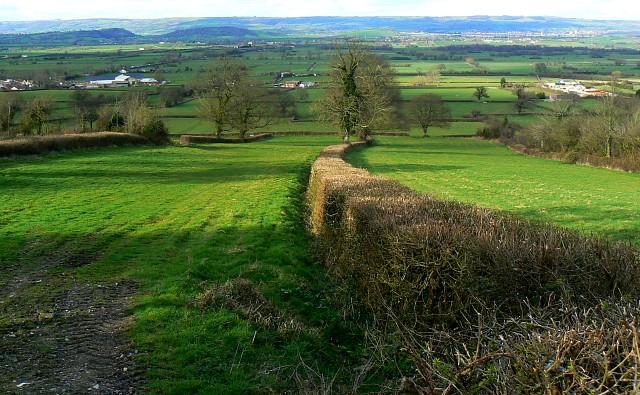 View north from Maiden Croft Lane, Glastonbury