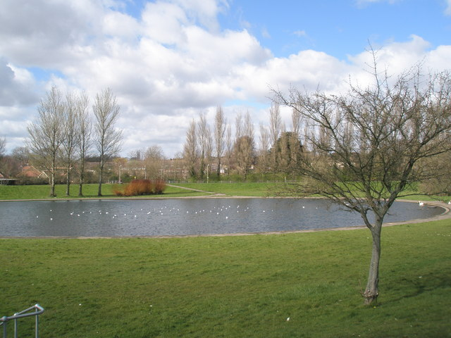Pond between Elizabeth Road and Shaftesbury Avenue