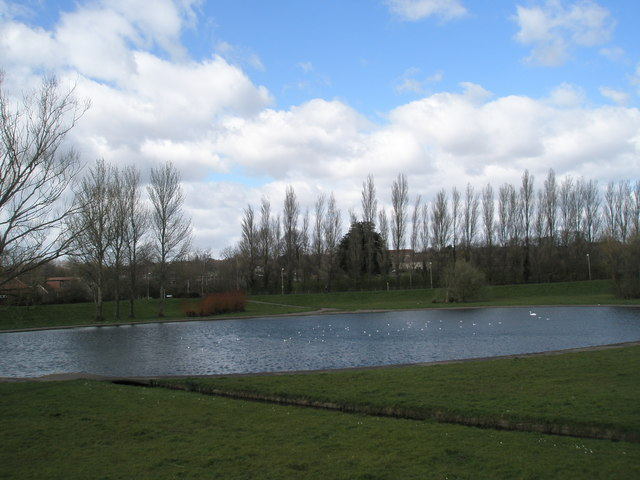 Peaceful pond at Purbrook