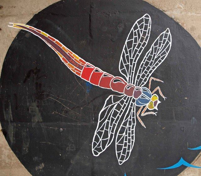Dragonfly mural steve fareham geograph britain and for Dragonfly mural