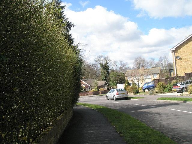 Bend in Newlands Road