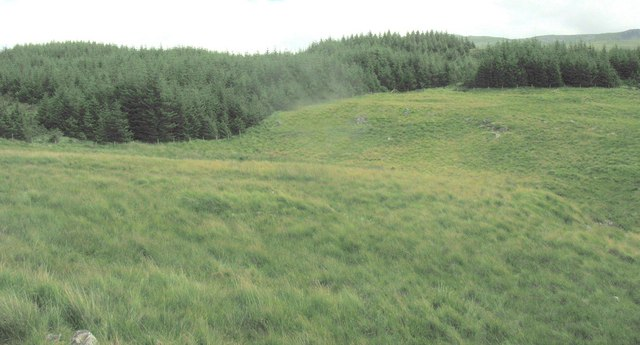 Forest/moorland boundary at Allt-y-gwine