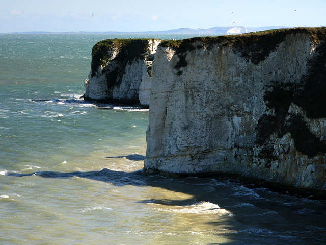 View along Handfast Point towards Old Harry Rocks