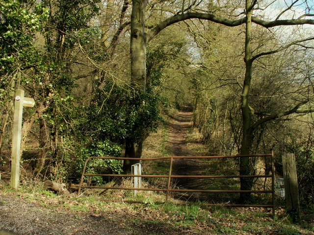A bridleway to Lingwood Common
