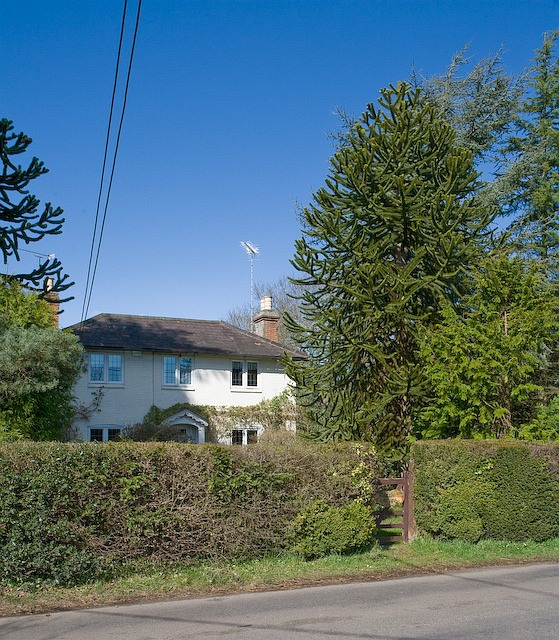 Puzzle Cottage, Canada Road