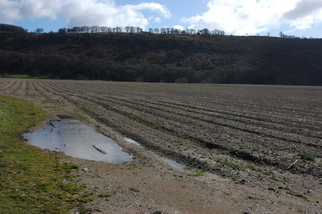 Arable land and Coppet Hill