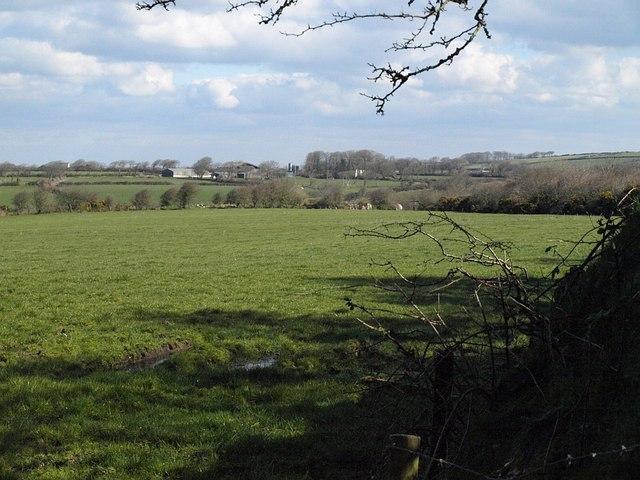 Field near Tregray Farm