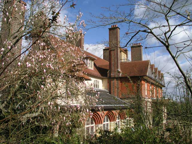 Standen in the spring