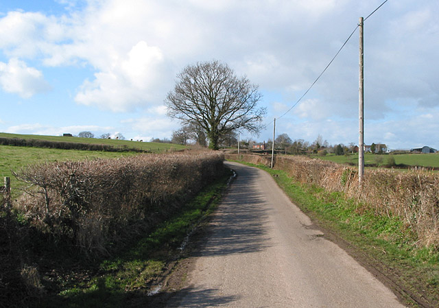 Country road to Much Marcle from Kempley