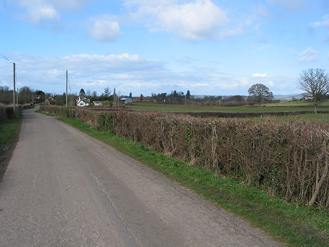 Country road N to Much Marcle from Kempley