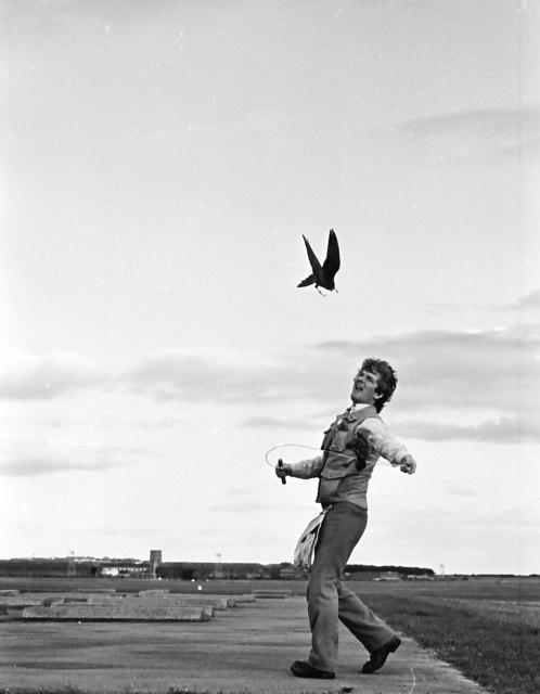 Airfield  Birdman of RAF Lossiemouth