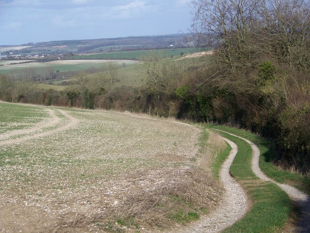 Chalk track near Homington
