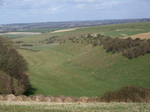Valley near Homington