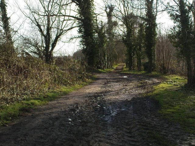 Bridleway towards Mackershaw Trough