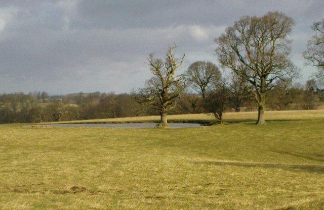 Mackershaw Top Pond