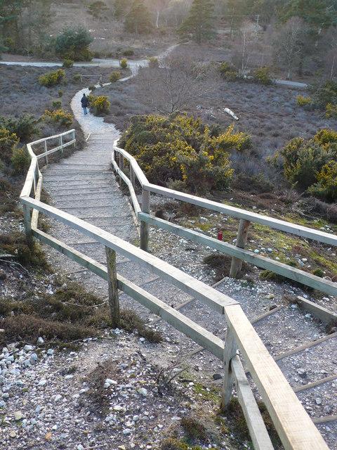 Arne RSPB Reserve Viewpoint